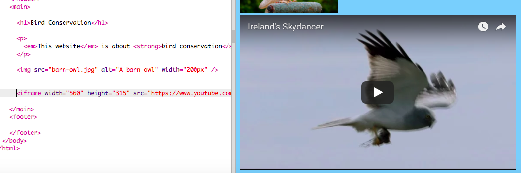 Youtube Map Of Ireland.Bird Watch Website 1 0 Adding A Map Or Video Raspberry Pi Projects