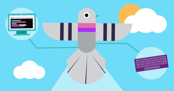 Bird watch website 2 0 - Add hover effects | Raspberry Pi